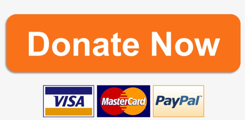 60 605223 donate now button png.png